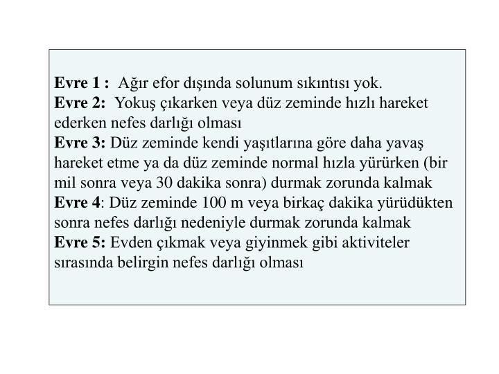 Evre 1: