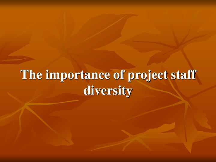 The importance of project staff diversity