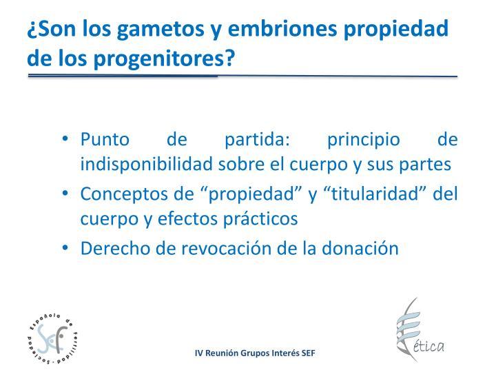 ¿Son los gametos y embriones propiedad de los progenitores?