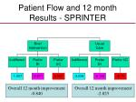 patient flow and 12 month results sprinter
