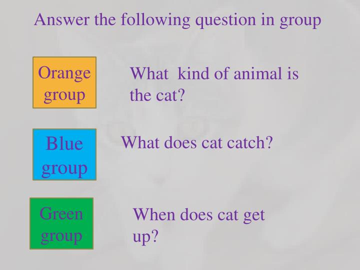 Answer the following question in group