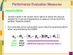 performance evaluation measures3