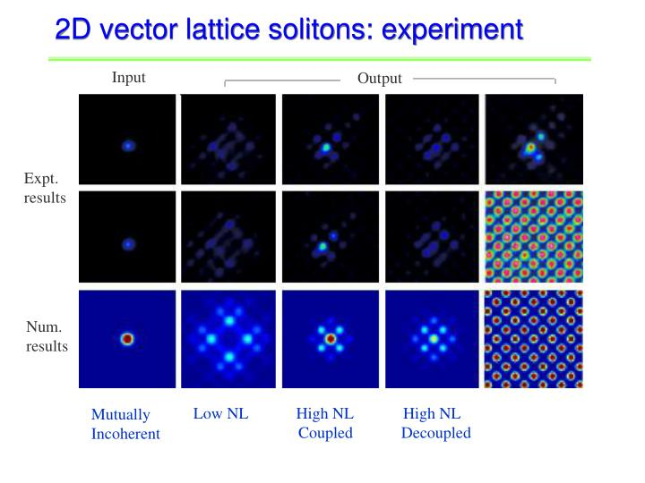 2D vector lattice solitons: experiment