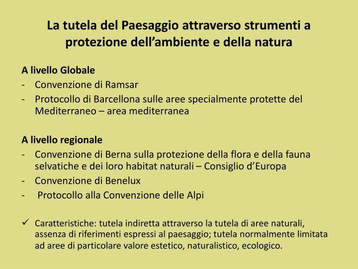 La tutela del Paesaggio attraverso strumenti a protezione dell'ambiente e della natura