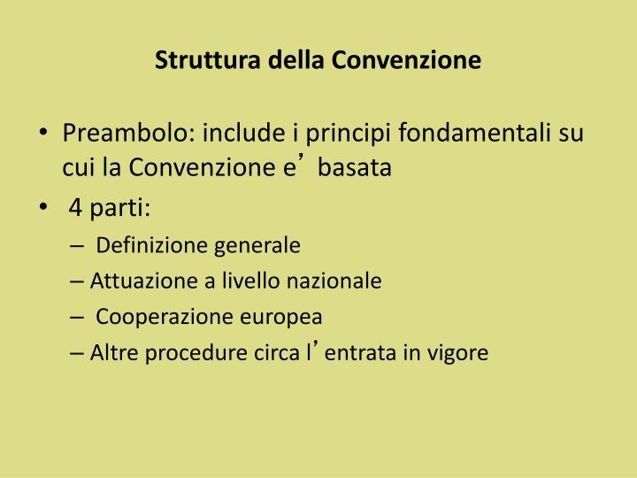 Struttura della Convenzione