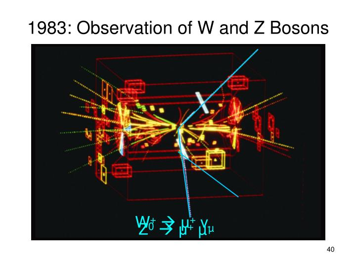 Z Boson PPT - An Overview of t...