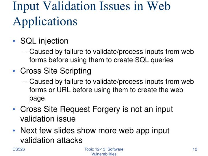 Input Validation Issues in Web Applications