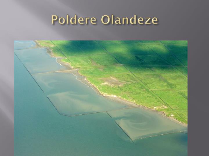 Poldere Olandeze