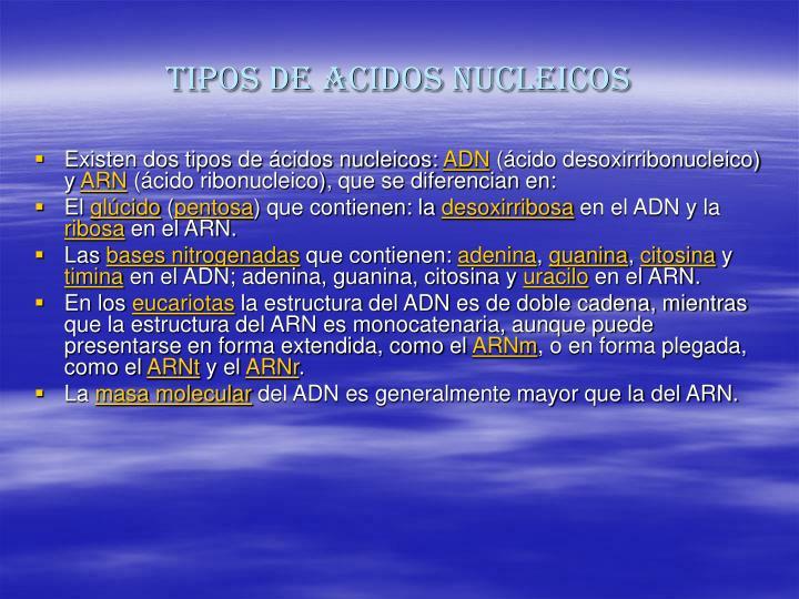 TIPOS DE ACIDOS NUCLEICOS