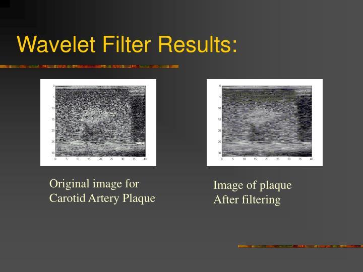 Wavelet Filter Results: