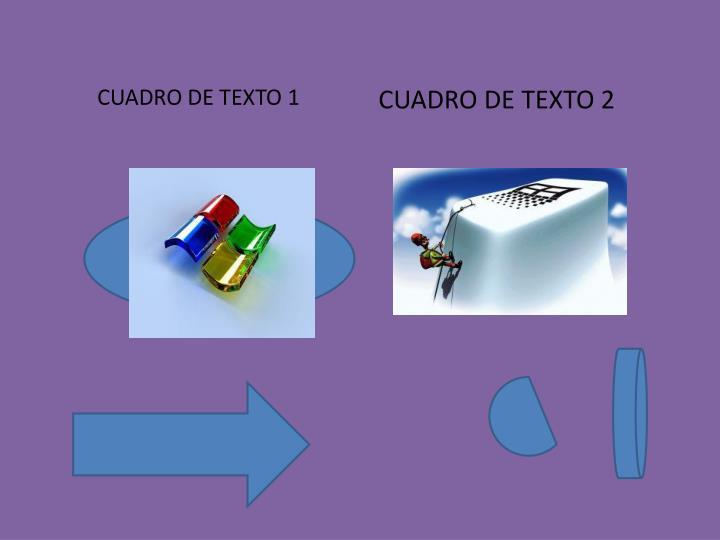 CUADRO DE TEXTO 1