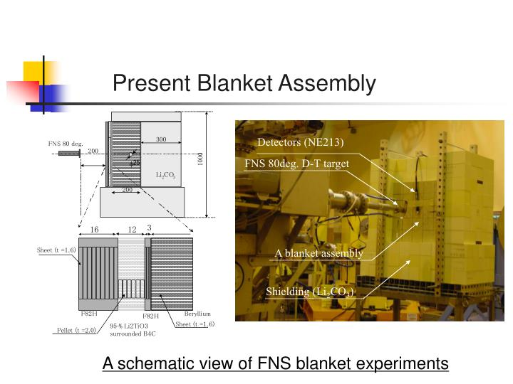 Present Blanket Assembly