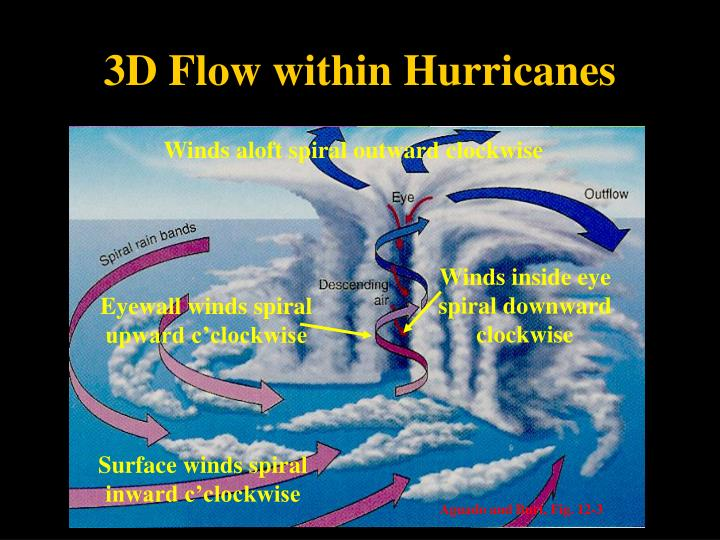 3D Flow within Hurricanes