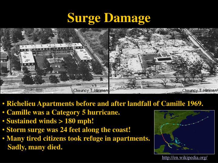 Surge Damage