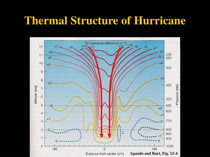 Thermal Structure of Hurricane