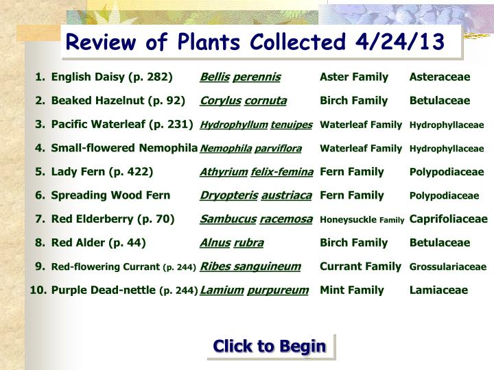 review of plants collected 4 24 13