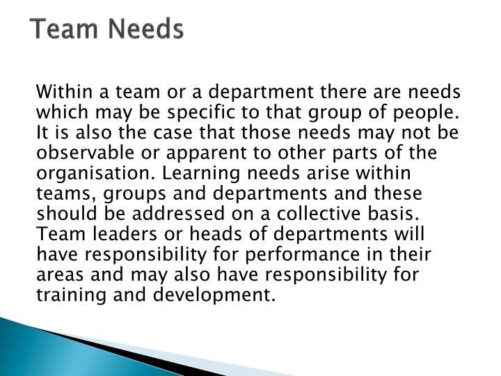 Team Needs