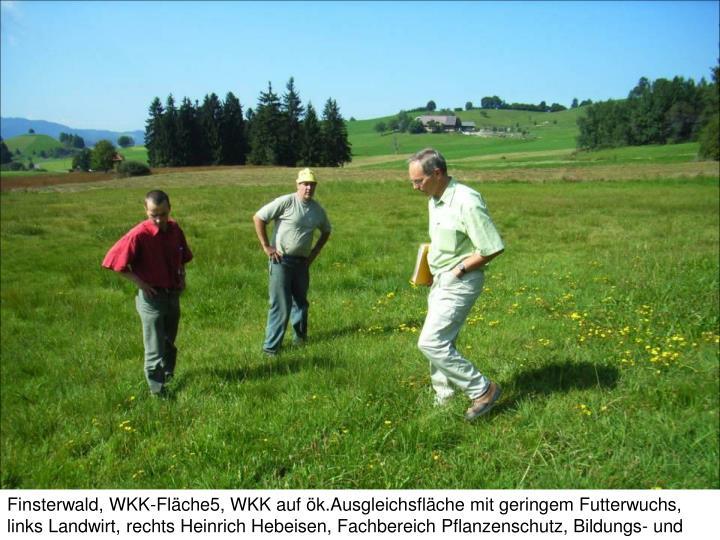 Finsterwald, WKK-Fläche5, WKK auf ök.Ausgleichsfläche mit geringem Futterwuchs,