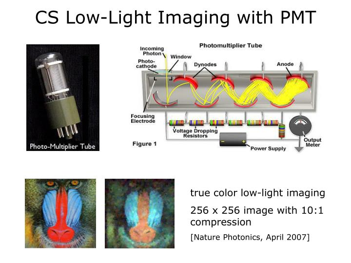CS Low-Light Imaging with PMT