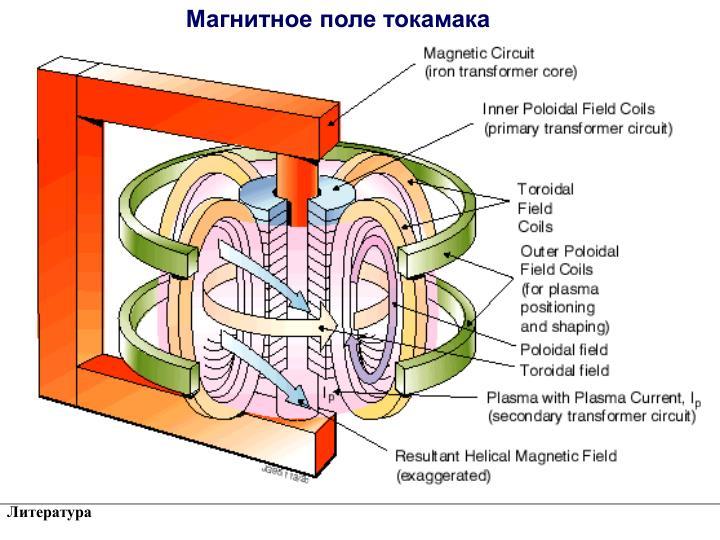 Магнитное поле токамака