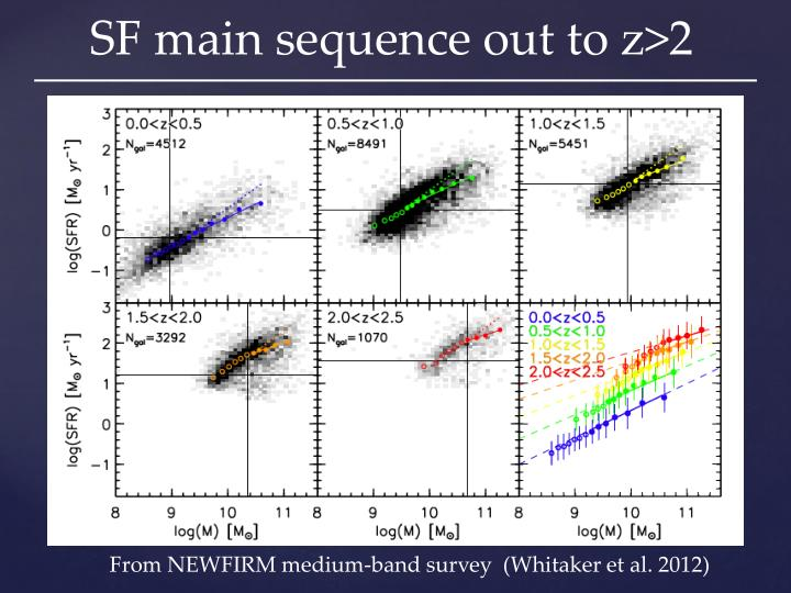 SF main sequence out to z>2