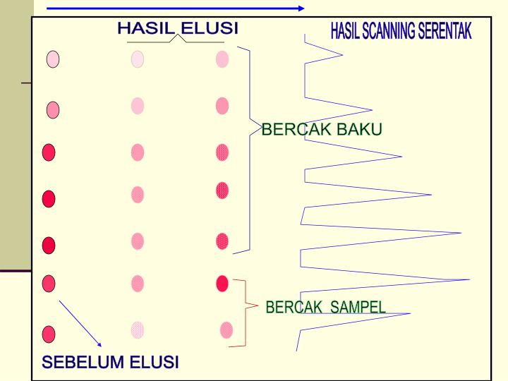 HASIL ELUSI