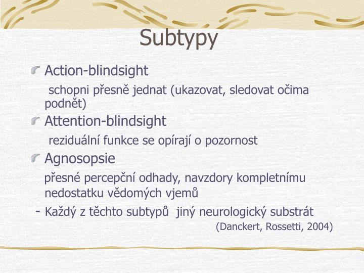 Subtypy