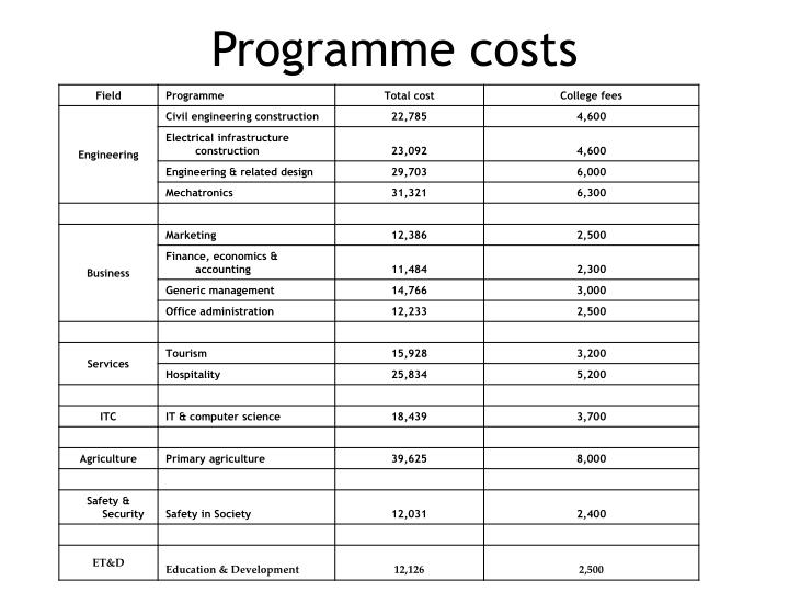 Programme costs