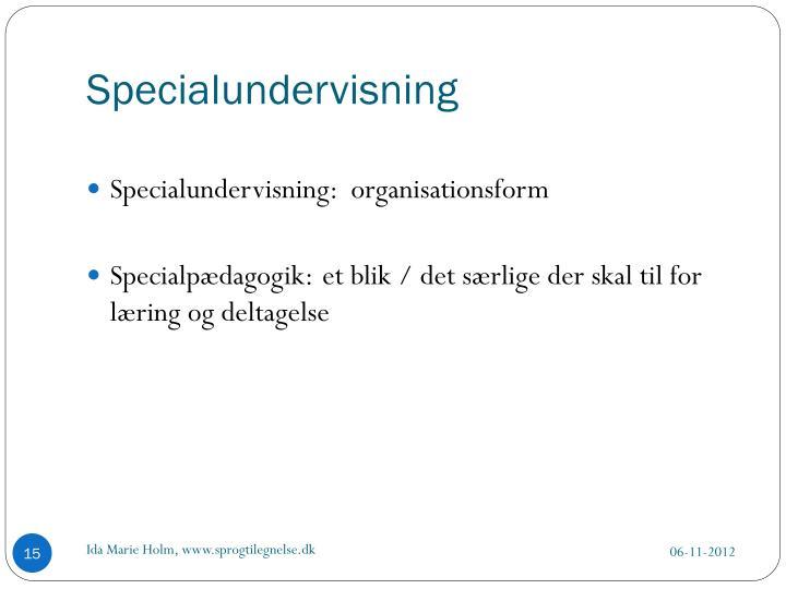 Specialundervisning