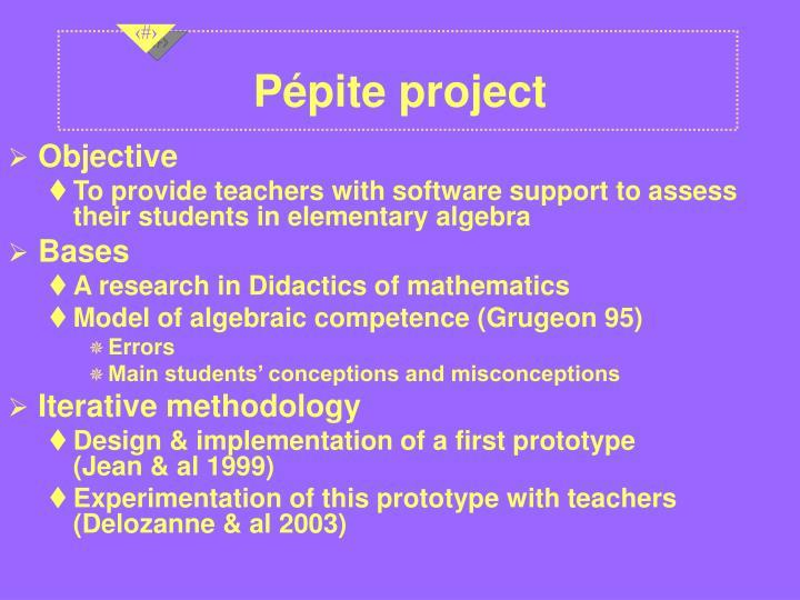 Pépite project