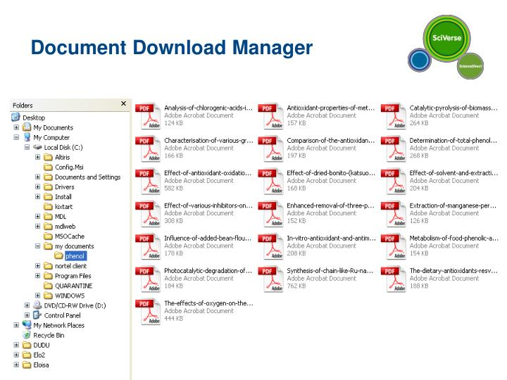 Document Download Manager