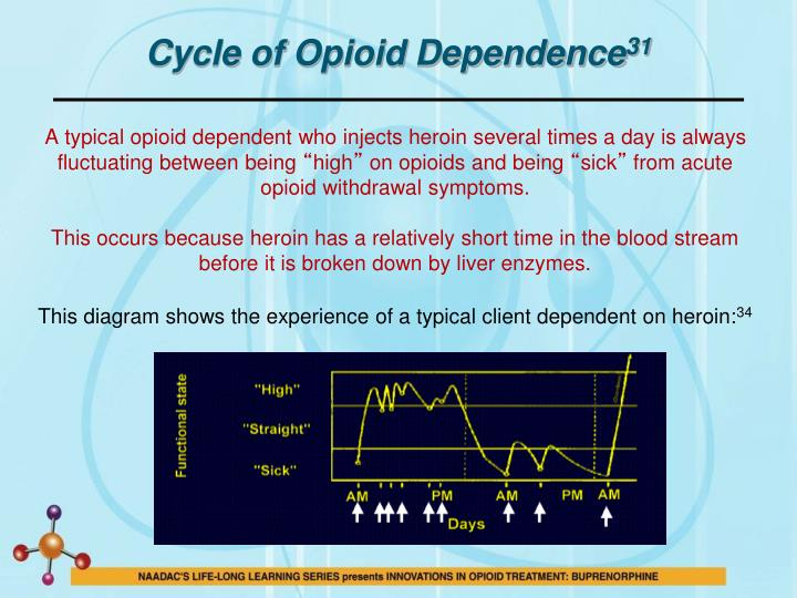 Cycle of Opioid Dependence