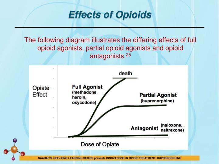 Effects of Opioids