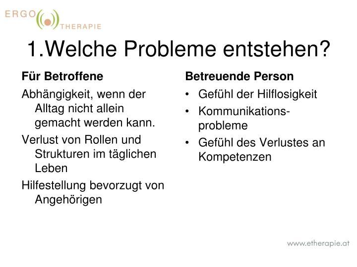 1.Welche Probleme entstehen?
