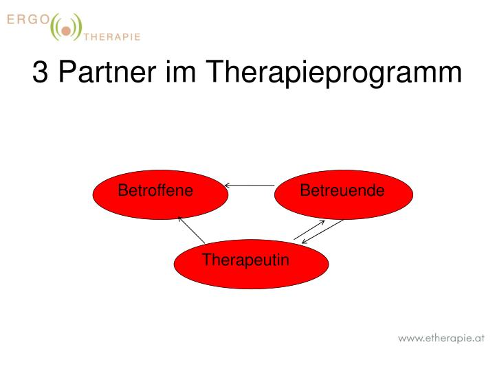 3 Partner im Therapieprogramm