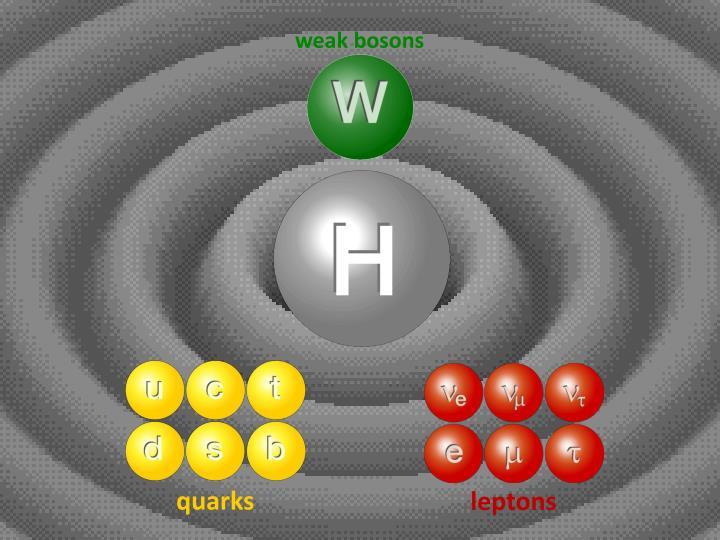 weak bosons