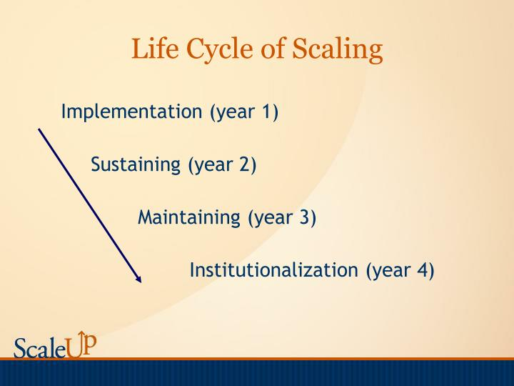 Life cycle of scaling