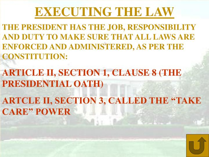 EXECUTING THE LAW