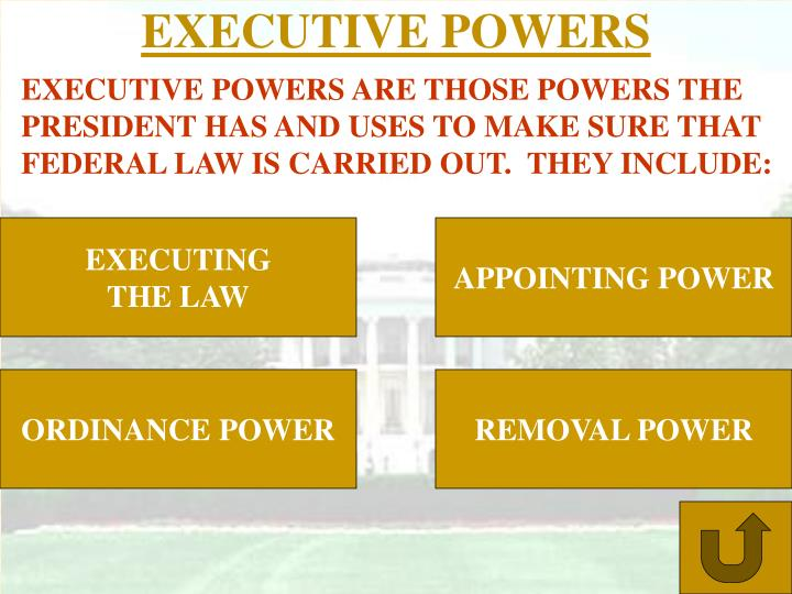EXECUTIVE POWERS
