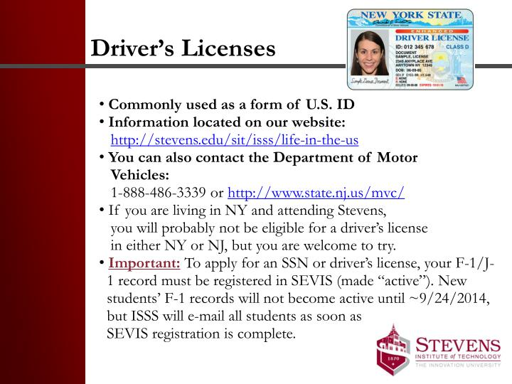 Driver's Licenses