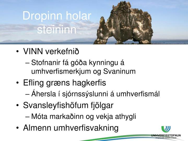 Dropinn holar steininn