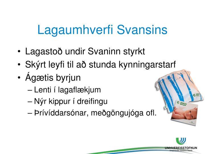 Lagaumhverfi Svansins
