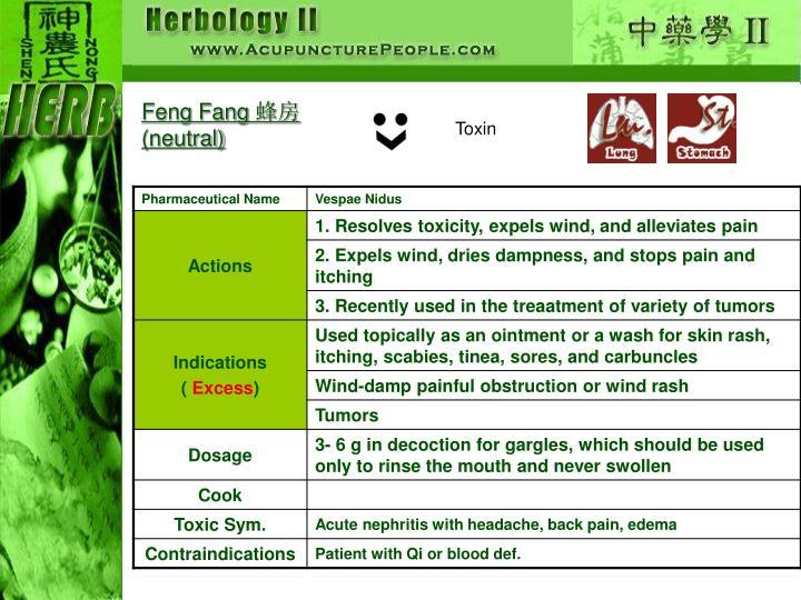 Feng Fang
