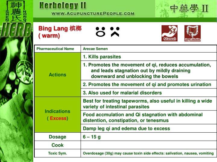 Bing Lang
