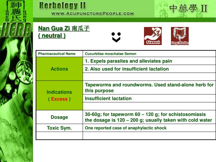 Nan Gua Zi