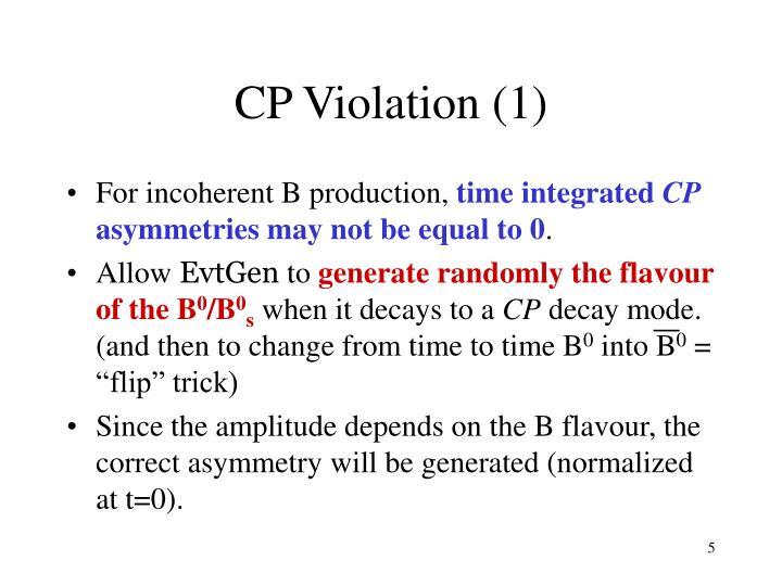 CP Violation (1)