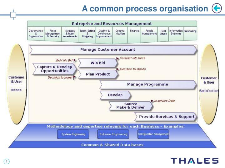 A common process organisation