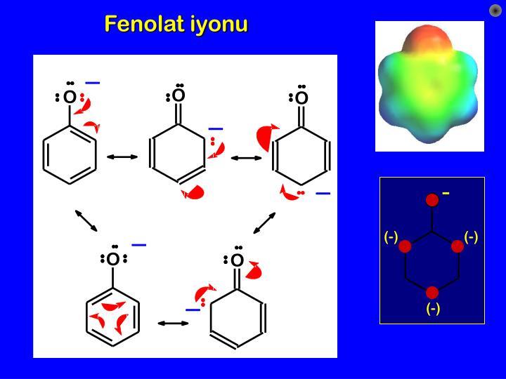 Fenolat iyonu