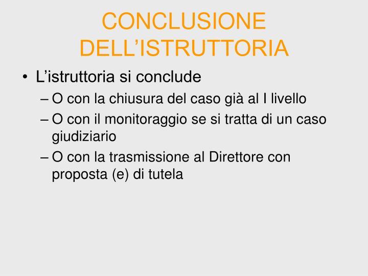CONCLUSIONE DELL'ISTRUTTORIA