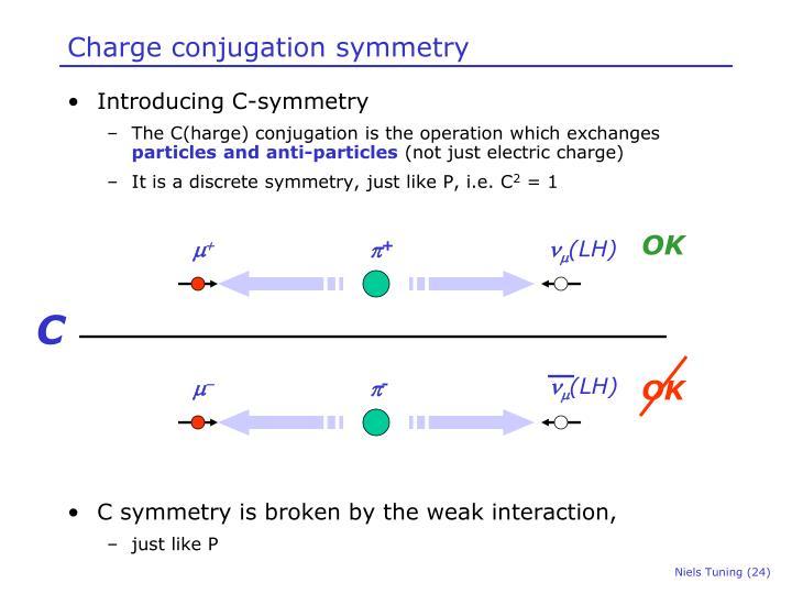 Charge conjugation symmetry